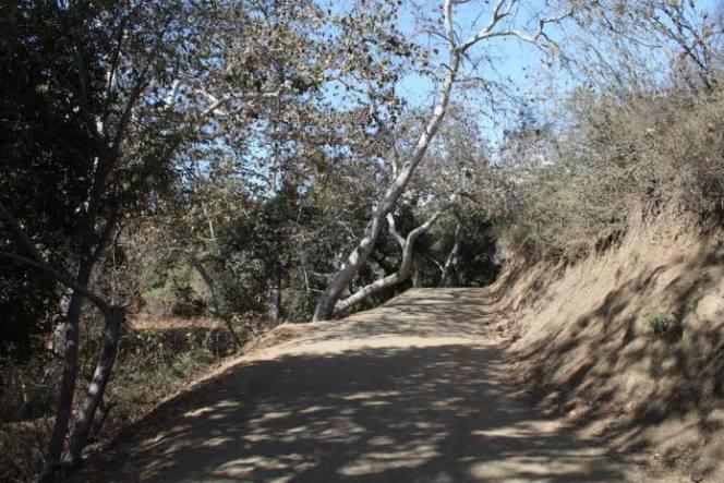 hike-western-canyon